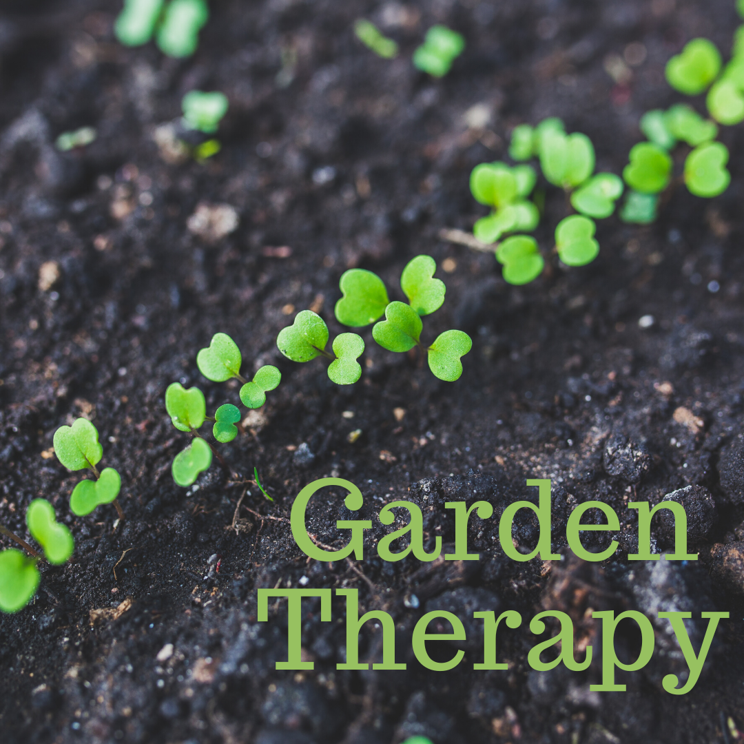 It's Time for Garden Therapy